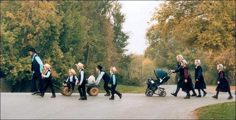 Amish-Ailesi