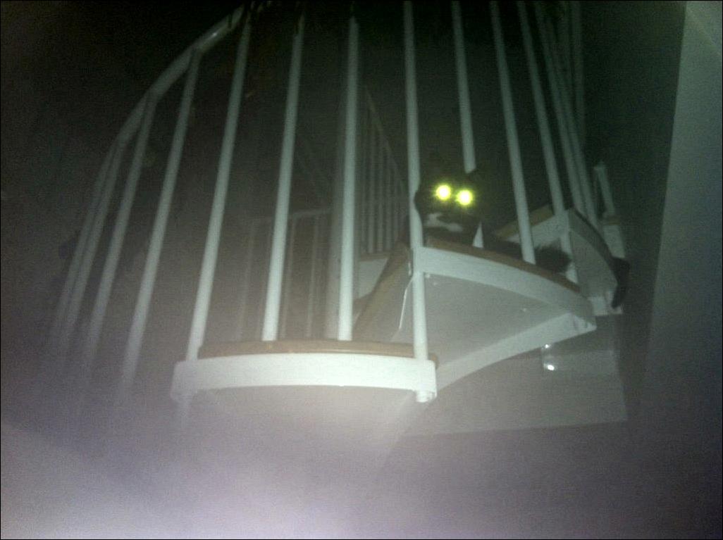 paranormal olaylar oku