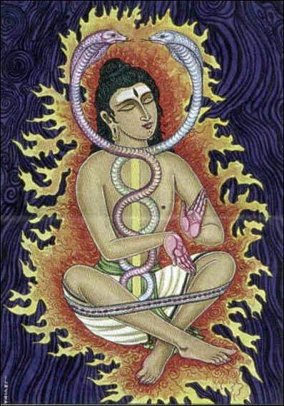 08a734889dc4237566461a1f616da865--kundaliniyoga-chakra-yoga
