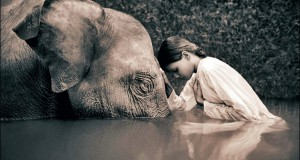 sepia_elephants_children_gregory_colbert_ashes_and_snow_1366x768_61231