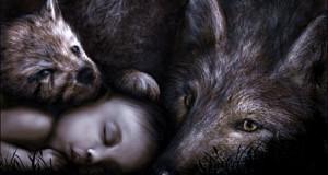 wolf_baby_at_night_by_alisha_mordicae